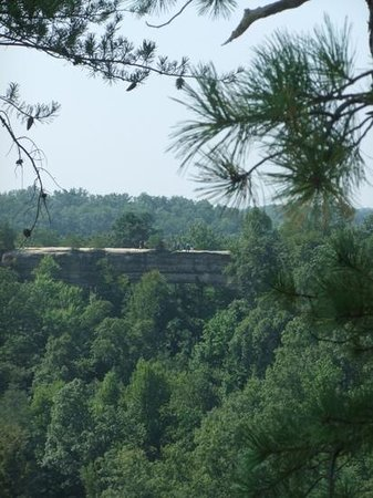 Natural Bridge State Resort Park: the Bridge from the Overlook