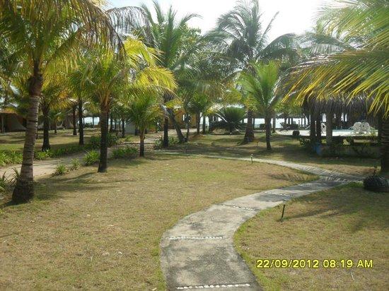 Pousada Brisas: Área entre os chalés e o acesso à praia