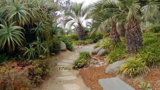 Hilton La Jolla Torrey Pines: garden