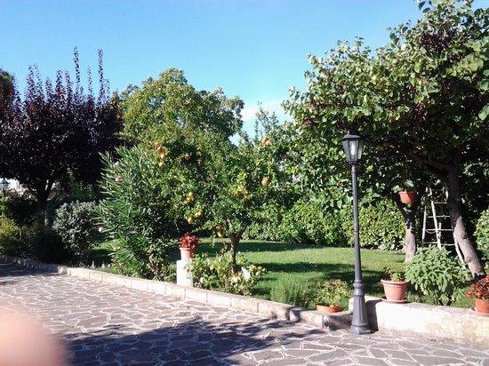B&B Laura : giardino