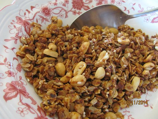Blue Rock Bed and Breakfast : Home made healthy foods like this granola cereal