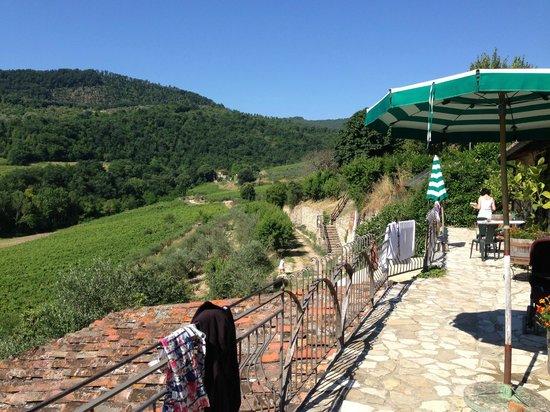 Fattoria di Castiglionchio: View from outside our room - fattoria 15