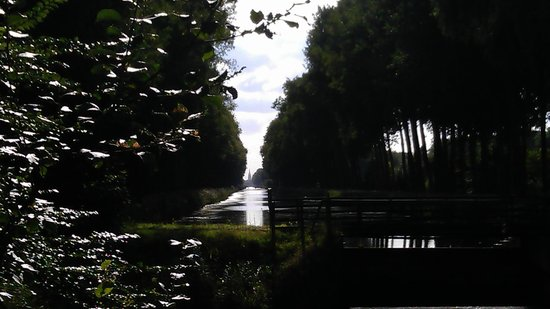 Quasimundo Bike Tours : View back to Brugge with the towel just barely visible on the horizon