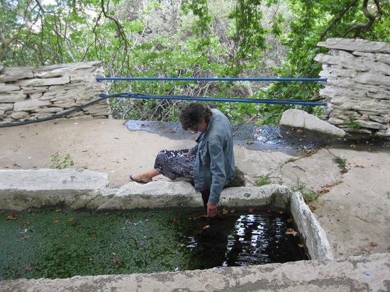 Ag Trianda: the pond