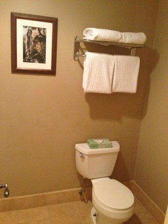 Rancho Bernardo Inn: Bathroom