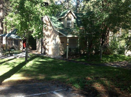 Sleepy Forest Cottages: Cottage 12