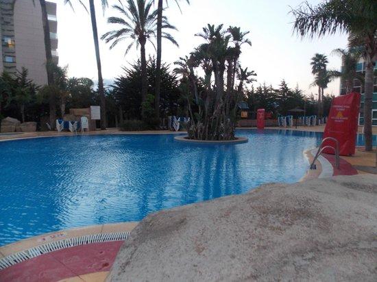 Hotel Flamingo Oasis: Main pool area