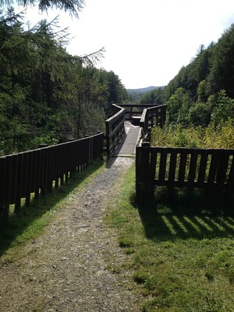 Creebridge House Hotel: Walk way to look down the Glen.