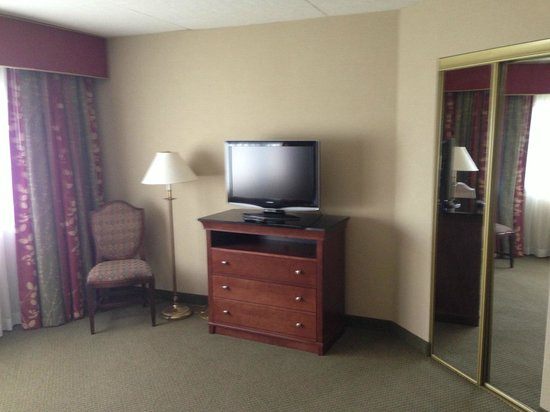 Embassy Suites by Hilton Detroit - Troy/Auburn Hills: TV from bed
