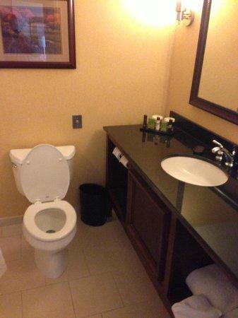 Embassy Suites by Hilton Detroit - Troy/Auburn Hills: Bathroom