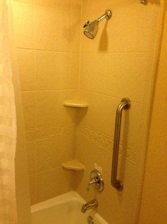 Embassy Suites by Hilton Detroit - Troy/Auburn Hills: Shower