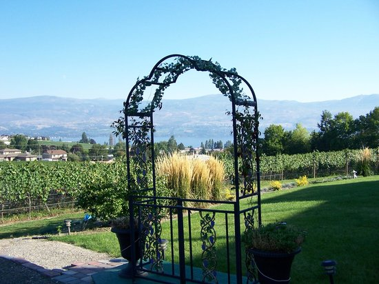De Rosa Vineyard Bed and Breakfast: View from the garden