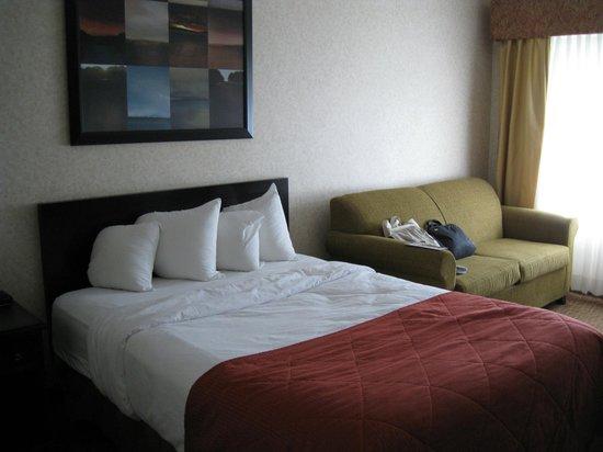 Quality Inn Sarnia: Room 202, Quality Inn, Sarnia, bed and couch