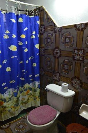 Villa Yohan: Baño privado