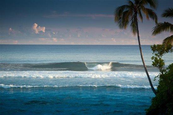 Seabreeze Resort: Surfs Up