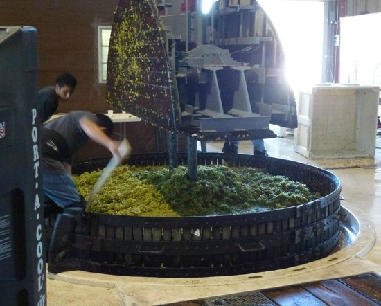 Laetitia Vineyard and Winery: Crushing Grapes