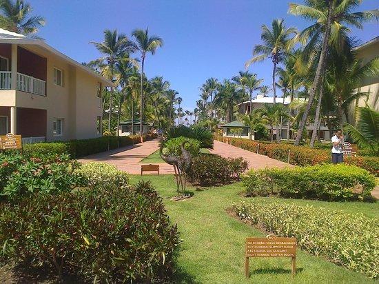 Sirenis Punta Cana Resort Casino & Aquagames: Avenida principal do hotel