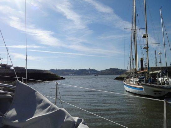 Palmayachts Boat Tours: Mágico