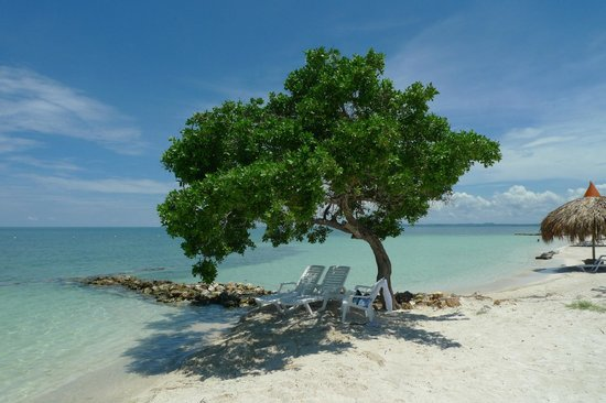 Decameron Isla Palma : Praia paradisíaca do hotel