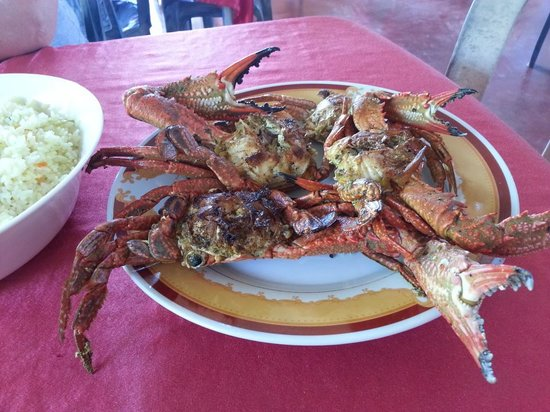 Red Lobster Tours Spa & Restaurant: crabs