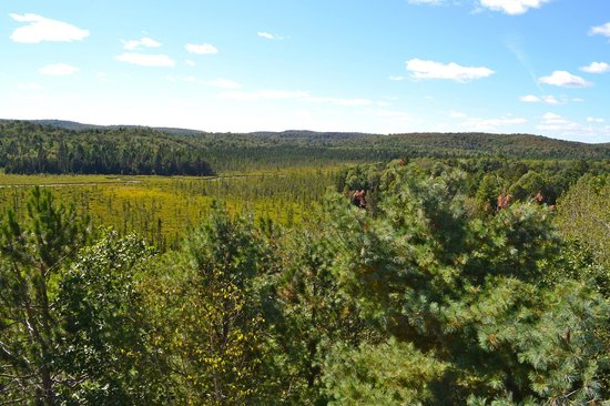 Algonquin Visitor Centre: Fantastic views from the lookout deck