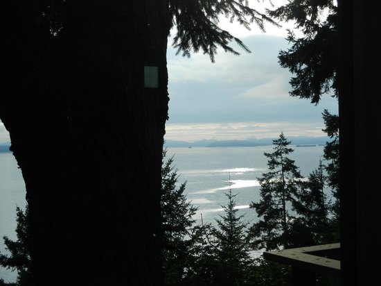 Oyster Bar on Chuckanut Drive: View. There are better views inside the restaurant of the water!