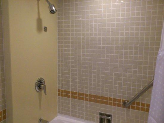 Holiday Inn Singapore Atrium: Shower area