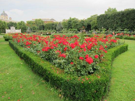 Volksgarten : Muitas rosas, fontes e esculturas