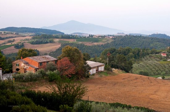 Villa Poggiano: The view from the bedroom, Room 7