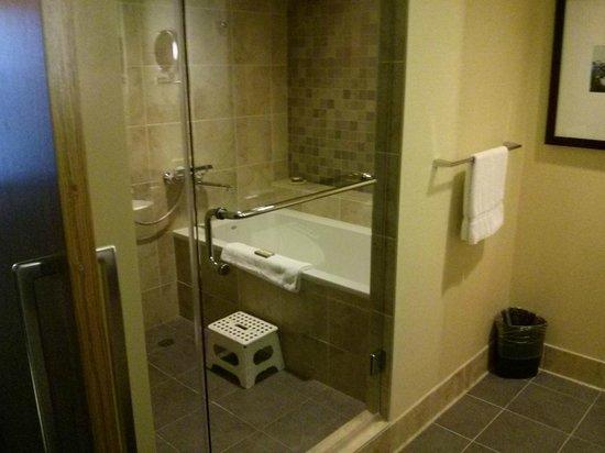 Miyako Hybrid Hotel: アメリカではあまり無い深い浴槽、日本より広いかも