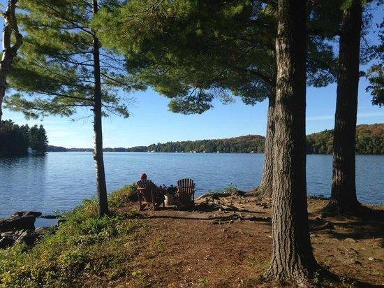 Sherwood Inn : Beautiful private seating overlooking the lake