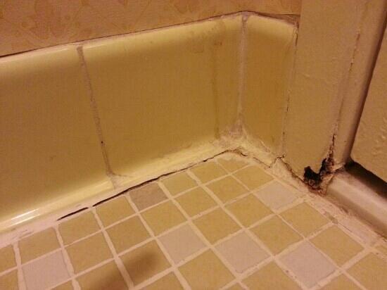 Clarion Hotel Anaheim Resort: bathroom flooring and rusty door jam
