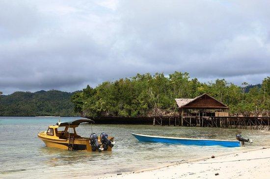 Raja Ampat Doberai Eco Resort: the beach