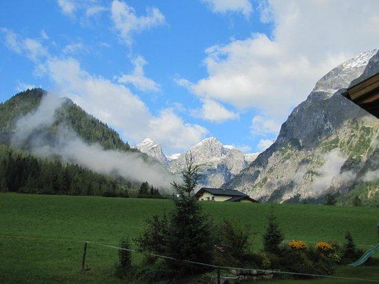 Alpengasthof Lammerhof: View from the room
