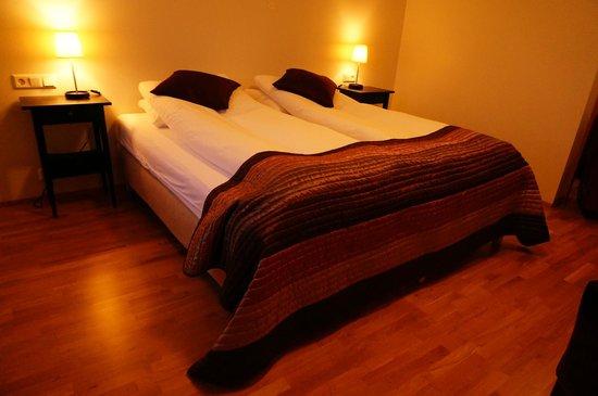 Hofsstadir Guesthouse: Double Room
