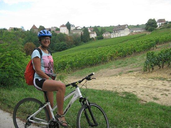 La Voie des Vignes : Vineyards and small villages