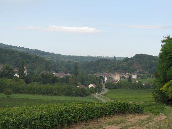 La Voie des Vignes : Surrounded by vineyards (Nolay-Santenay)