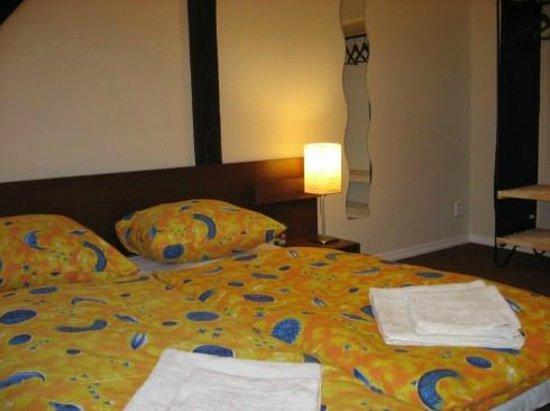 Sokolska Youth Hostel : Double room