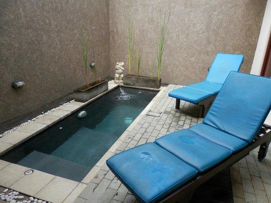 Bali Rich Luxury Villas Ubud: private pool