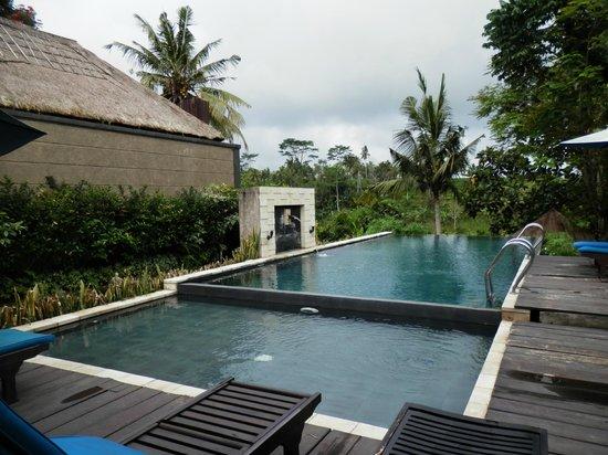 Ashoka Tree Resort Ubud : Hotel pool