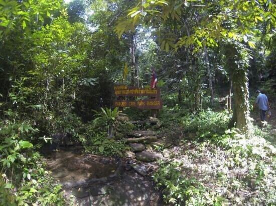 Khao Mai Kaew Cave: .