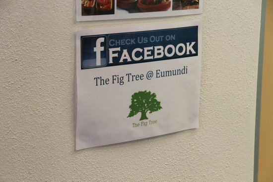 The Fig Tree: We follow
