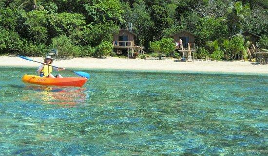 Mantaray Island Resort : Looking from reef to Jungle Bures
