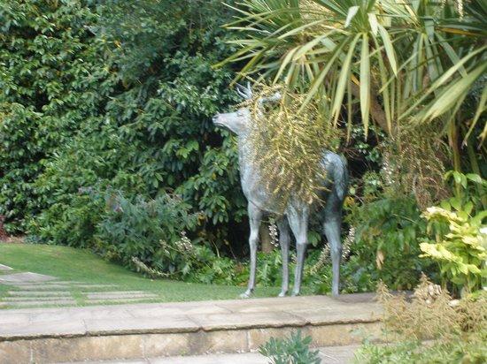 Glenview Hotel: Secret Garden!