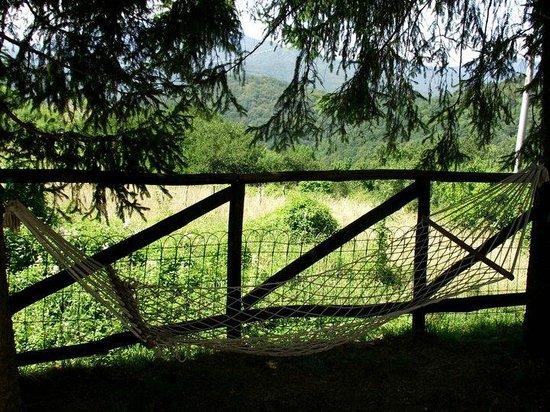 B&B Orso Stanco: L'amaca in giardino!