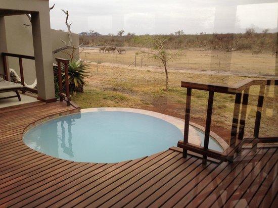 Jamala Madikwe: The waterhole from the deck