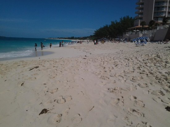 Hotel Riu Palace Paradise Island: on the beach