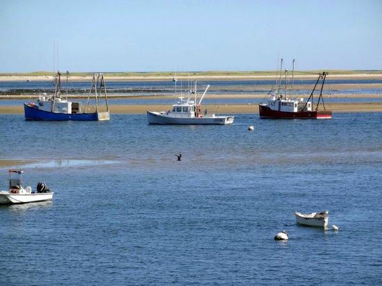Chatham Pier and Fish Market: Chatham Fishing Boats