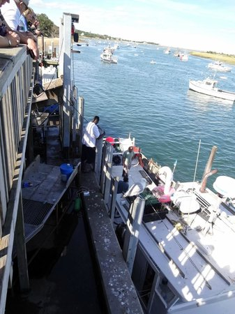 Chatham Pier and Fish Market: The Hunter Unloads
