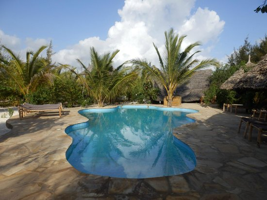 Demani Lodge: Pool